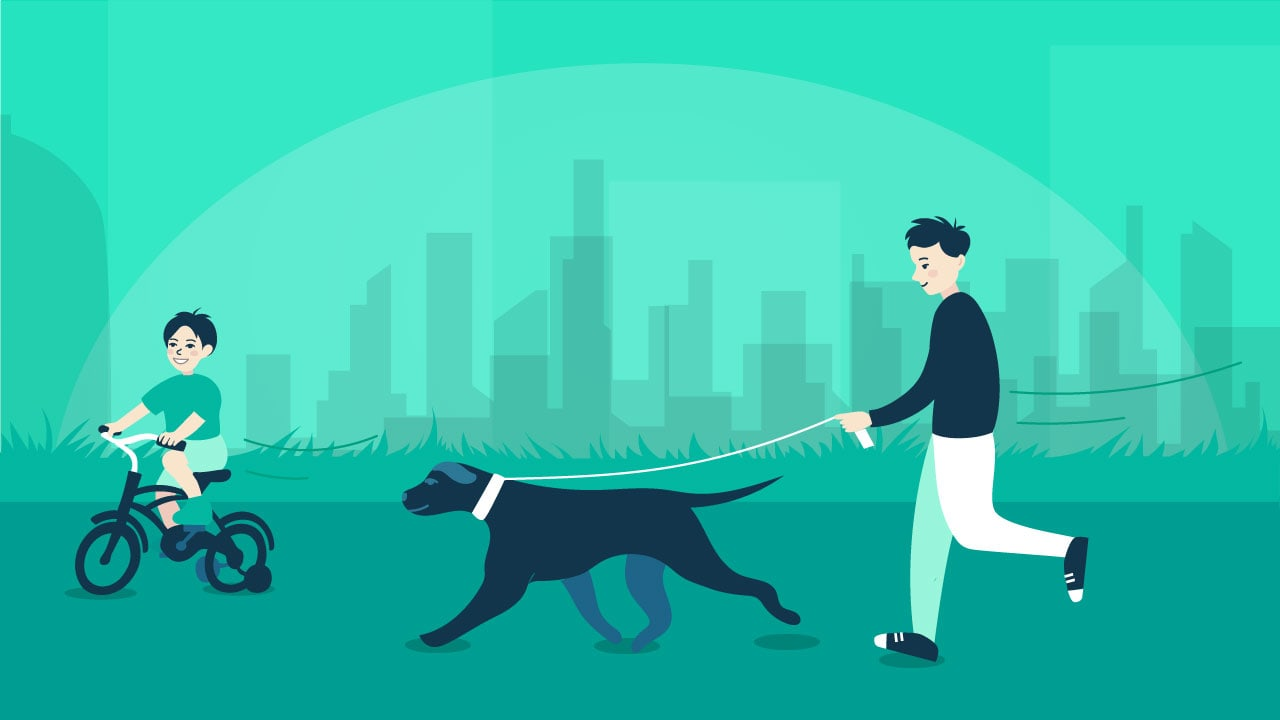 Pet-walking-in-Dubai-min.jpg