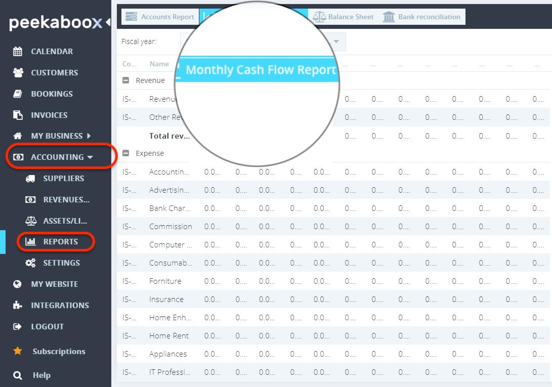 Peekaboox - Monthly Cash Flow